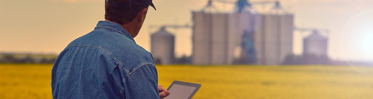 Ag tax, farmer standing in field using computer tablet