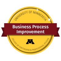 Business Process Improvement Digital Badge