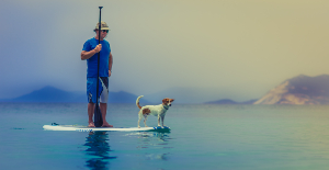 image of old man on paddleboard with small dog