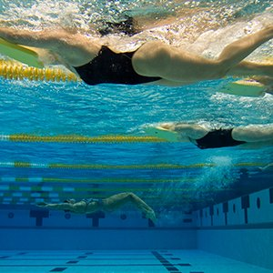 Sports and recreation - swimmers underwater